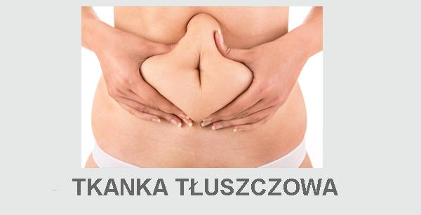 Tkanka tłuszczowa liposukcja lipotransfer usuwanie tłuszczu tkanki tłuszczowej modelowanie ciała tłuszcz brzuch boczki bryczesy pośladki ozonolipoliza liposukcja usuwanie tkanki tłuszczowej ozonoterapia powiększanie tłuszczem karboksyterapia modelowanie ciała wyszczuplanie adipoliza lipoliza lipotransfer wypełnienie własnym tłuszczem lipoliza laserowa usuwanie tłuszczu intralipidoterapia
